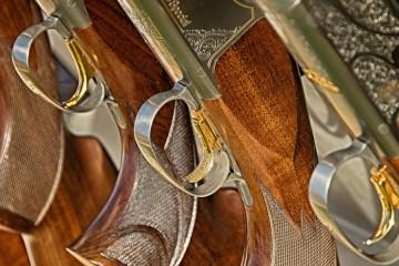 guns-467710_1920