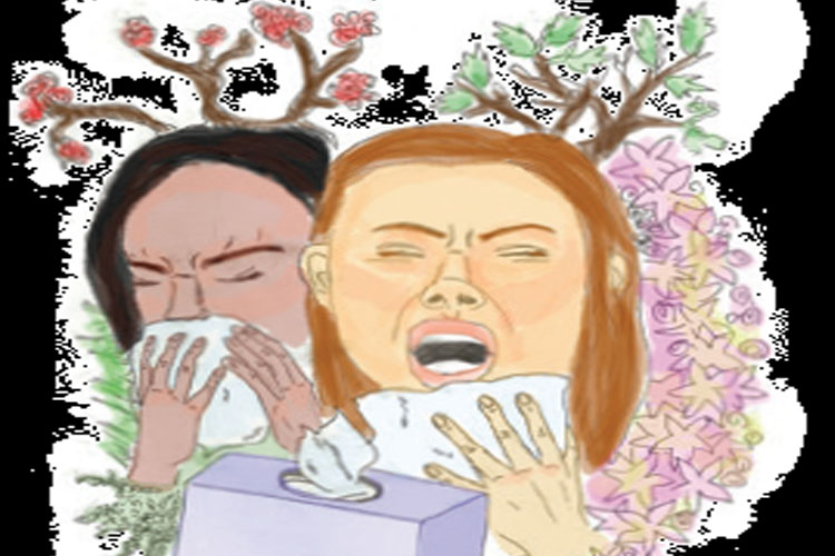 Daisy Duels allergies vs