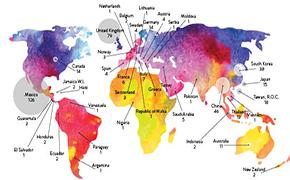 Hockadaisies Plant Seeds All Over the World