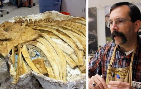 The Fourcast visits the Perot Mammoth Lab