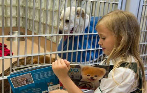 Students Soothe Dogs with Stories