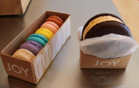 Joy-fully Unique: Joy Macarons Review