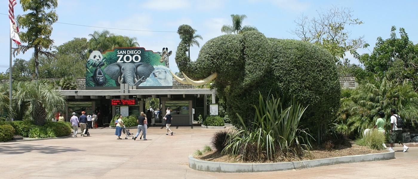 san diego zoo essay Photo essay: the san diego zoo / blog, postcards, travel photos the san diego zoo is pretty much the zoo of all zoos (you pay for it, too, at a whopping $42/person) being an animal lover, i was really looking forward to my visit.