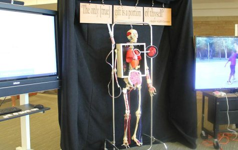 Brandi Finazzo's anatomy classes completed the skeleton with 3D printed organs.