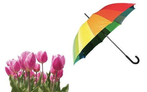 Staff Standoff: April Showers or May Flowers?
