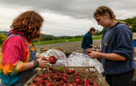 From Farm to Classroom