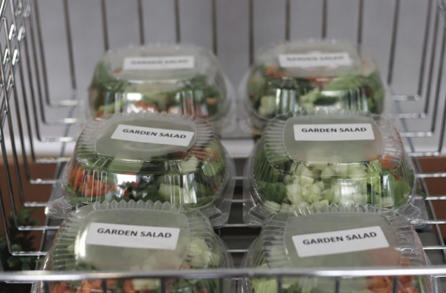 Packaged lunches stay safe from germs but increase plastic waste. photo by Juliana Blazek.