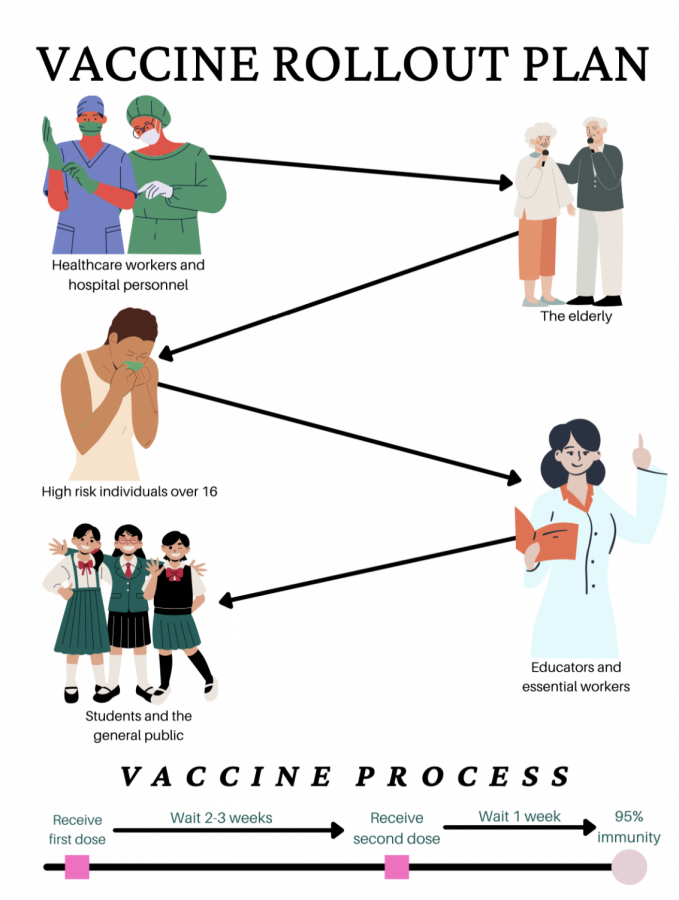 A guide to understanding the process of vaccine rollout in the United States. infographic by Zoya Haq